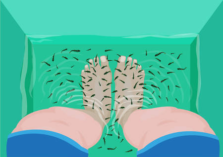 garra: Fish Massage concept. Top View of Feet in a Spa Massage Tub Filled with Doctor Fish or Garra rufa. Editable Clip Art.