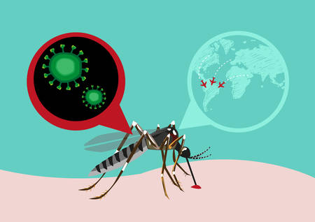 Zika Virus Outbreak and Travel Alert concept.  Transmitted by A. aegypti mosquito and it is linked to cause microcephaly on infected pregnant women. Editable Clip Art.