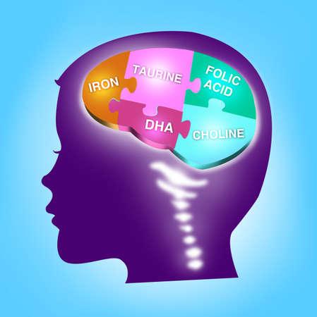 아이의 두뇌 발달 개념입니다. 필수 미네랄.