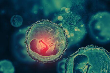Human fetus on scientific background. 3d illustration
