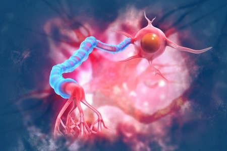Neurons on scientific background. 3d illustration