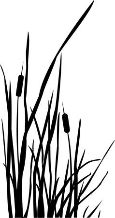 Silhouet van Reed Bush. Vector illustratie Stock Illustratie