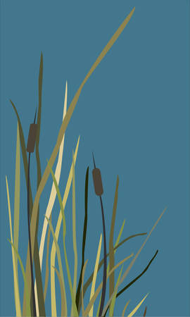 Bush of Swamp Reed on a Lake. vector Illustration Stock Vector - 86737759