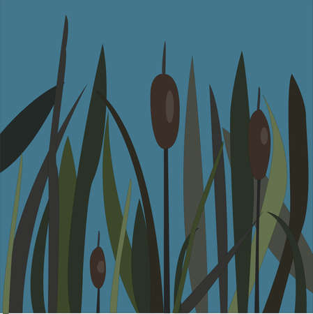 Bush of Swamp Reed on a Lake. vector Illustration Stock Photo