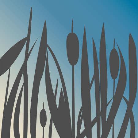 Silhouet van Reed Bush. Vectorillustratie