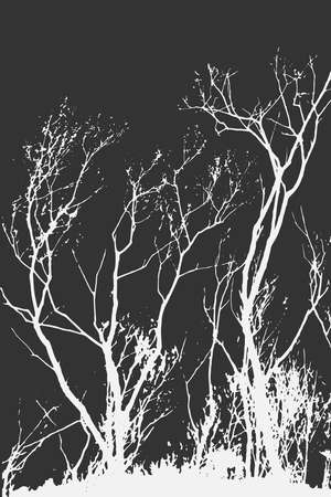 Silhouettes of Trees on subtle background. Tree Pattern. Vector illustration Stock Photo