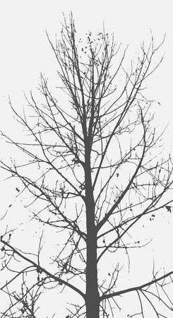미묘한 배경에 나무의 실루엣입니다. 트리 패턴입니다. 벡터 일러스트 레이 션 스톡 콘텐츠
