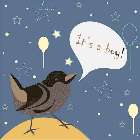 Baby Boy Birth announcement. Cute Bird announces the arrival of a baby boy