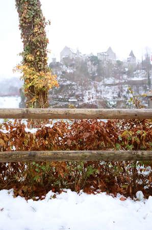 largest: Rhine Falls near the Schaffhausen in northern Switzerland Stock Photo