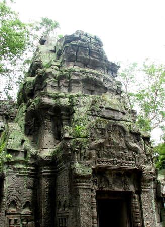 strangler: Ta Prohm at Angkor, Cambodia Stock Photo