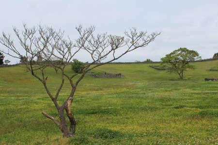 View of Sangumburi Crater in Jeju Island, South Korea
