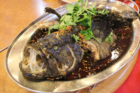 Steamed grouper with black soy sauce with coriander on top