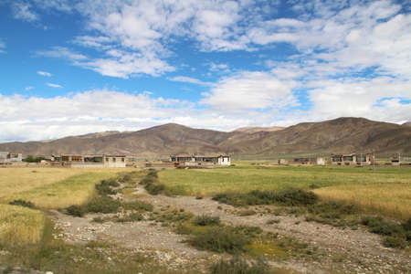 Tibetan house and the highland barley field in Tibet, China