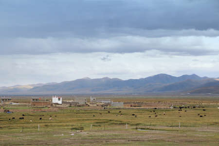 tibetan house: View of the mountains, Tibetan house, grassland and yaks in a cloudy day, Tibet, China