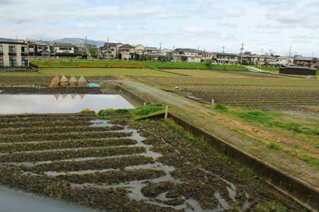 rural town: View of a rural town with the paddy fields along the way to Nara, Japan