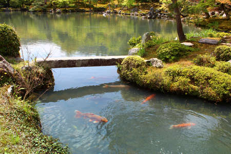 The Sogen Pond with carps at the garden of Tenryu-ji, designated as a special place of scenic beauty in Kyoto, Japan Stock Photo