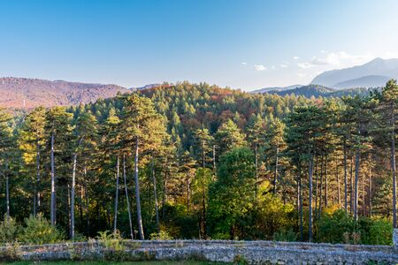 mountain landscape with forest full of vegetation, blue sky and a stone wall on the bottom Stock fotó
