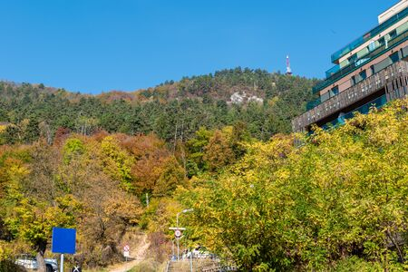 beautiful mountain landscape with forest consisting of many green and yellow trees, a glass building on the right and a blue sky and a sign on the bottom left with free space for your text
