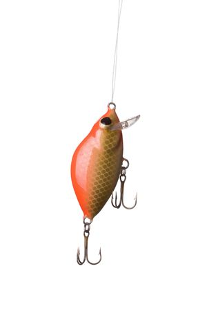 rapala: Fishing lure -floating wobbler on white background