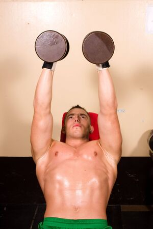 novice: novice bodybuilder training in the gym