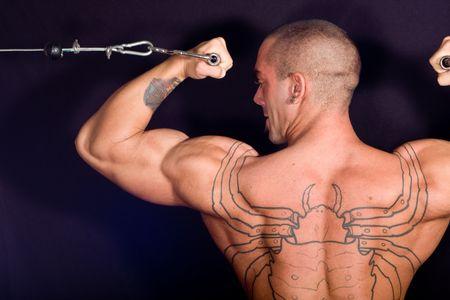 arm tattoo: Bodybuilder training in the gym Stock Photo