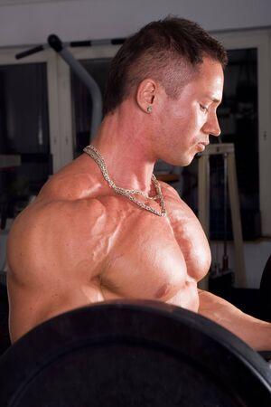 Bodybuilder training in the gym Stock Photo - 5518671