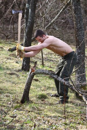muscular woodcutter in a forest   photo