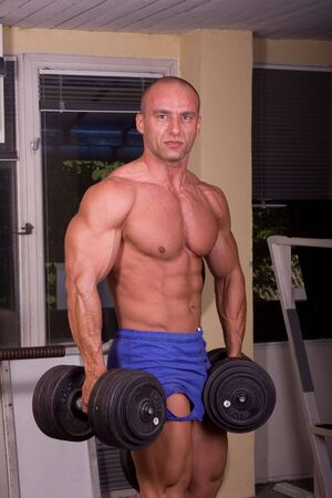 Bodybuilder training Stock Photo - 6284409