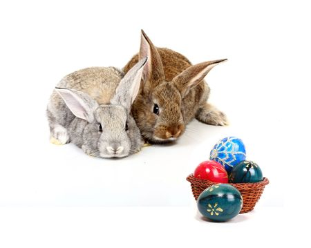 young rabbits with easter eggs photo