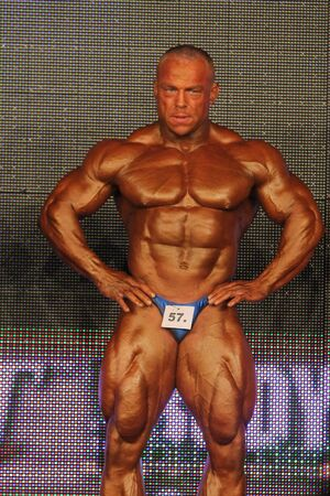 body builder: BUDAPEST - NOVEMBER 7: Vanis Petr participates in WABBA bodybuilding world championship Pro category November 7, 2009 in Budapest, Hungary