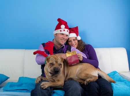 happy couple celebrating christmas wit sharpei dog Stock Photo - 11591102