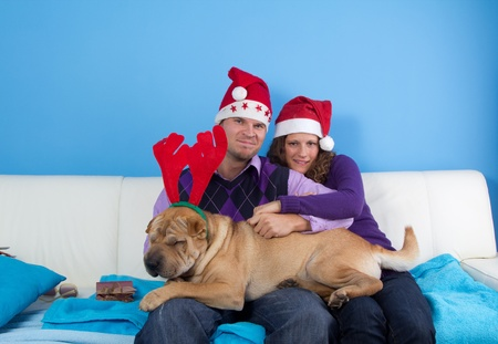 happy couple celebrating christmas wit sharpei dog photo