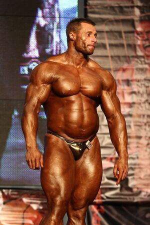 BUDAPEST - NOVEMBER 20: Kormany Mihaly participate in IFBB Champion of the Year 2011 Overall category on November 20, 2011 in Budapest, Hungary