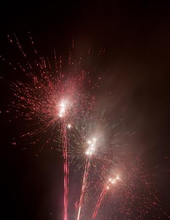 panoply: beautiful colorful firework at night Stock Photo