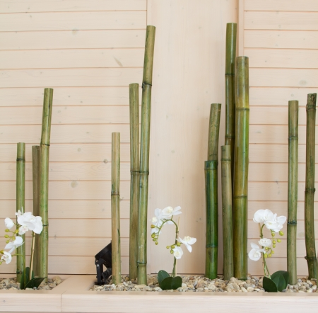 orchid flowers with bamboo decoration photo