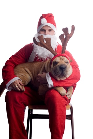 santa claus with sharpei dog photo