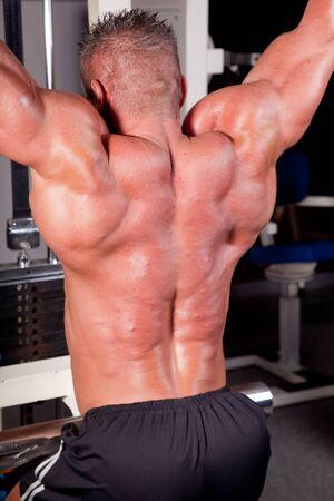 bodybuilder training: Bodybuilder training his back   Stock Photo