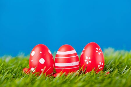 easter eggs in green grass photo
