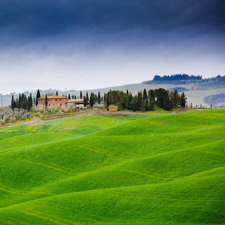 typical: Typical Tuscan landscape  in Italy Stock Photo