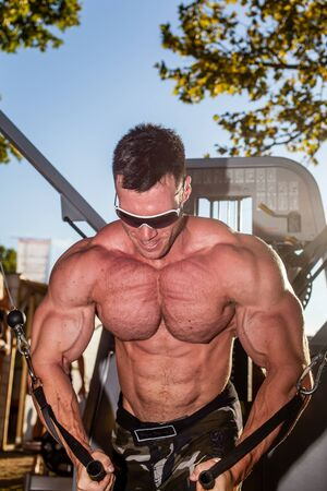 testosterone: SIOFOK - AUG 1: Molnar Peter participate in Scitec Muscle Beach bodybuilding seminar on August 1, 2015 in Siofok, Hungary