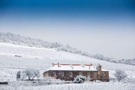 pecs: Vineyard with building in Pecs, hungary with snow Stock Photo