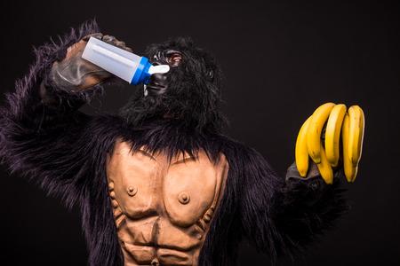 gorilla in studio with shaker and banana