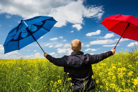 Businessman in rape field with umbrellas Stock Photo