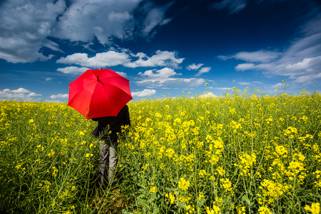 Businessman in rape field with umbrella