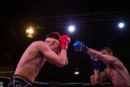 ZALAEGERSZEG, HUNGARY - APRIL 22: Unknown fighters participate the MMA Premium Leage tournament. Athletes in the ring.  April 22, 2017 in Zalaegerszeg, Hungary