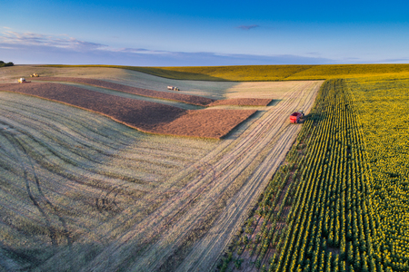 Aerial flight of field with agricultural work Stock Photo