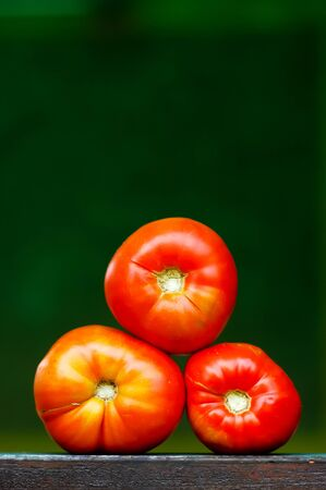 Three red fresh bio tomatoes each other on dark green background