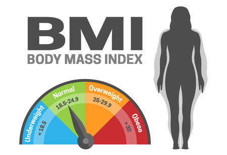 BMI Body Mass Index Infographic Vector Illustration with Woman Silhouette from Normal to Obese Weight Weight loss or Gain Ilustração