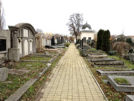 Jewish cemetery tombstone panorama