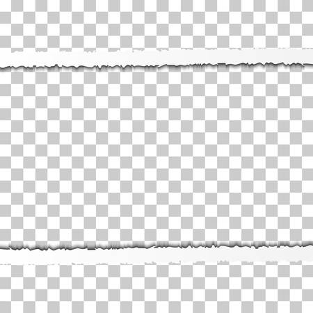 Straight Snatched Ripped Paper Border with Shadows Isolated on Transparent Background. Realistic Horizontal Paper Edge